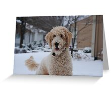 Well-trained Goldendoodle Greeting Card