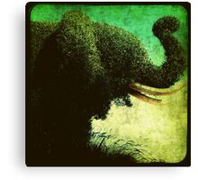 Ttv: Elephant Topiary Canvas Print