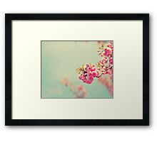 Cherry Spring Framed Print
