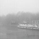 Fog 2 by Kasia Nowak