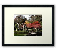 Autumn at Christchurch Gardens New Zealand Framed Print