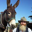 American Mammoth Donkey and  friend by Bev Pascoe