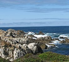Rocky Shoreline :: 17 Mile Drive :: Monterey, CA by pinklilypress