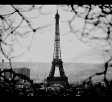 Eiffel Eyeful by Jeff Ewing