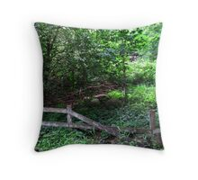 .lost. part 2 Throw Pillow
