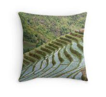 Rice/Padi Field, Sapa, Vietnam Throw Pillow