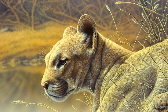 Puma by Christopher Pope