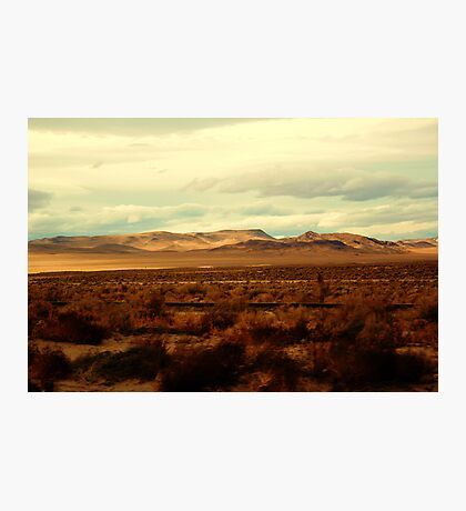 Tumble Weed Connection Photographic Print
