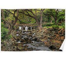 Lili'uokalani Botanical Garden Poster