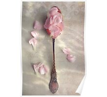 Carnation petals in a silver spoon Poster