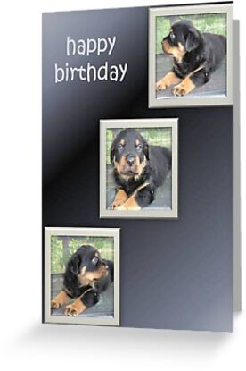 Rottweiler Birthday Collage by taiche