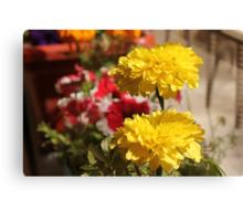 Yellow flower in a little garden Canvas Print