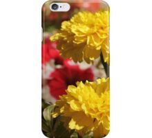 Yellow flower in a little garden iPhone Case/Skin