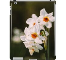 White Daffodil Flowers iPad Case/Skin