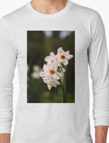 White Daffodil Flowers Long Sleeve T-Shirt
