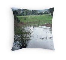 Neighbours farm with lagoon!!! Throw Pillow