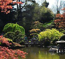 Japanse Hill Garden by sholder