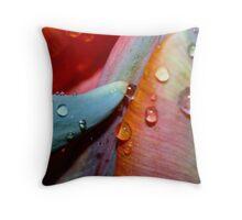 Rainbow Shower Throw Pillow