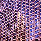 Woven Skyscraper by Darlene Virgin