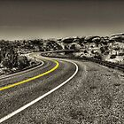 Road to The Needles Canyonlands National Park by Roger Passman