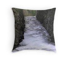 Late Light Throw Pillow