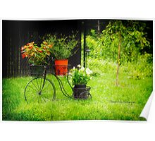 Bicycle Flower Pots Poster