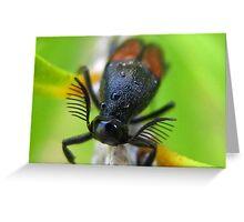 Cute Little Antennas Greeting Card