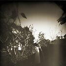 Sepia Fleur Garden by Soxy Fleming