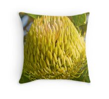 Protaceae Throw Pillow