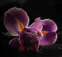 ~Sweet Surrender~ by Mystic Raven Art