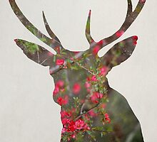 Deer With Quince by ALICIABOCK