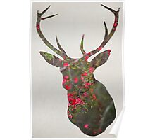 Deer With Quince Poster