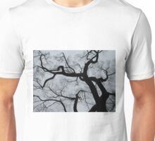 American Elm - The Mall - Central Park - NYC Unisex T-Shirt