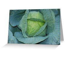 fruits & vegetables Greeting Card