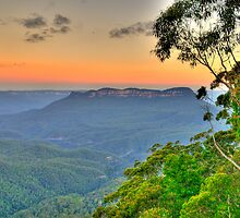 Tree Change - Blue Mountains World Heritage Area - The HDR Experience by Philip Johnson