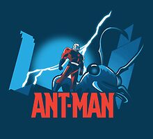 ANT-MAN / BAT-MAN MASHUP by tokkebi