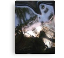 looking glass world Canvas Print