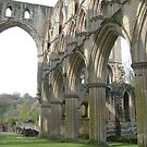 Just one more of Rievaulx by hilarydougill