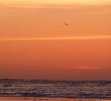 dawn by g richard anderson