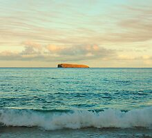 Molokini At Sunrise, Maui by Stephen Vecchiotti