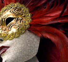 Venetian Mask by Stephen Knowles
