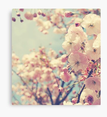 Why Would A Cherry Weep Canvas Print