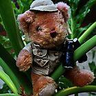 Teddy The Explorer by Evita