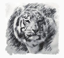 Tiger Sketch Kids Tee