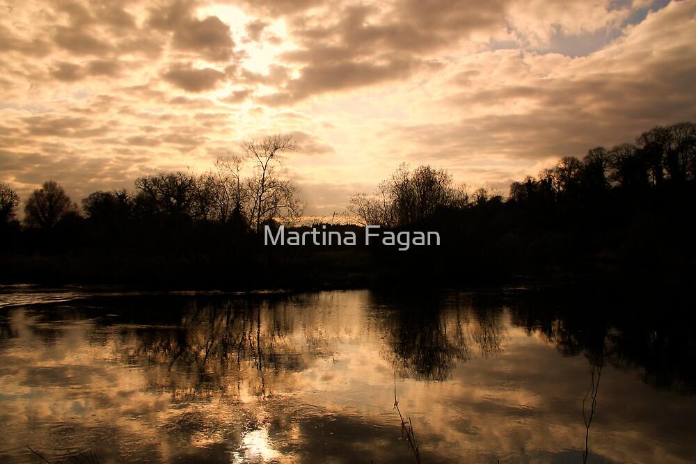 Evening Light by Martina Fagan