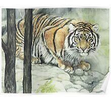 Crouching Tiger Poster