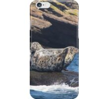Grey Seals  iPhone Case/Skin