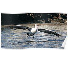 Landing Flaps Down Poster