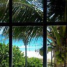 THE WINDOW TO MY SOUL by sky2007