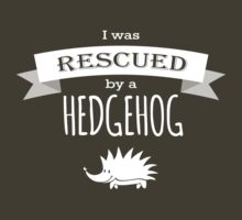 I was rescued by a HEDGEHOG! by hamsters